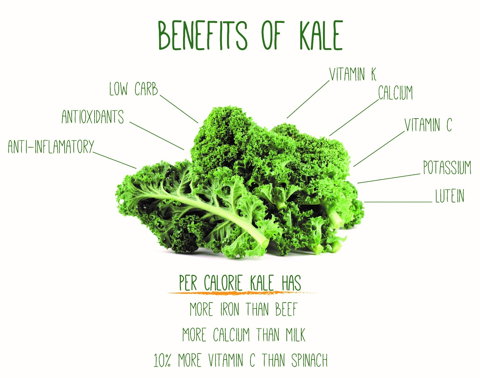 Why is kale so healthy